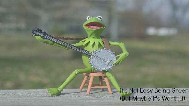 it;s not easy being green Kermit the frog